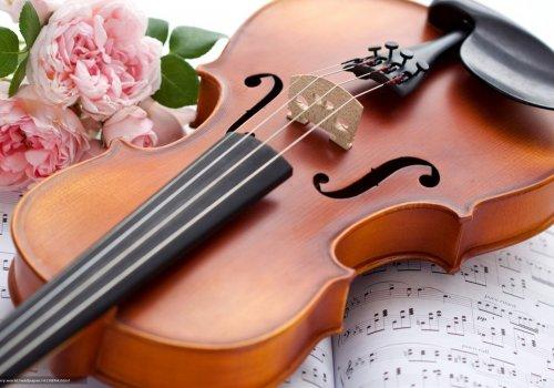 II Международный конкурс молодых исполнителейна струнных инструментах им. М.М. Берлянчика
