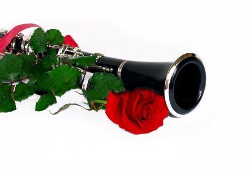 III Региональный конкурс исполнителей на оркестровых инструментах «TUTTI»